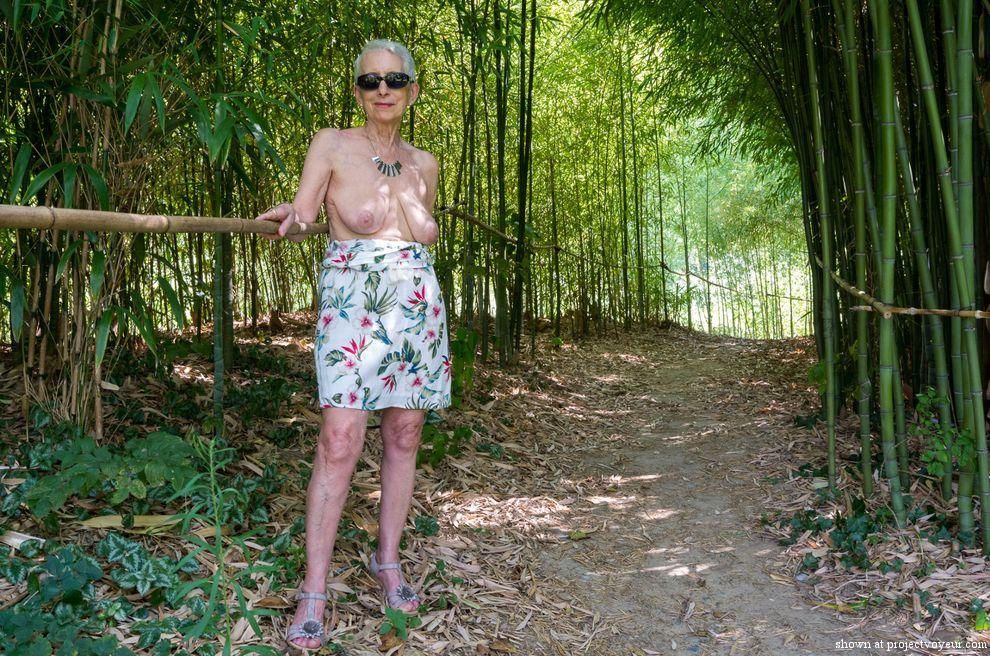 In a bamboo forest - image1