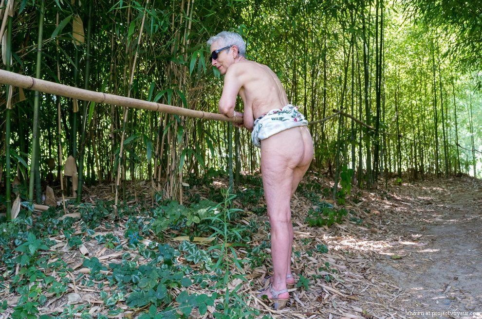 In a bamboo forest - image3