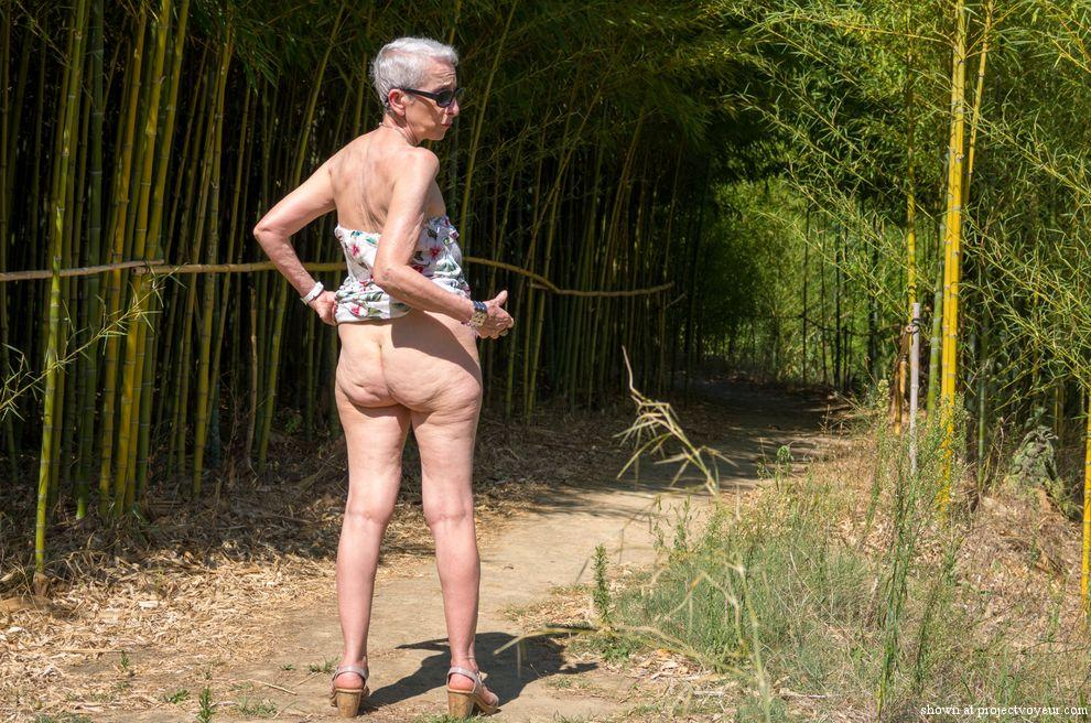 In a bamboo forest - image5