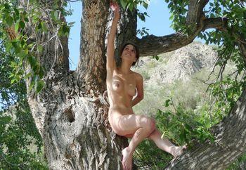 Public Nudity & Voyeur