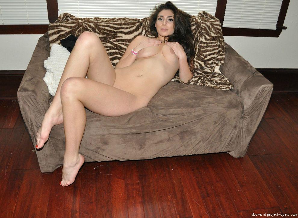 chochi on the sofa - image2