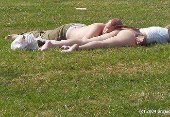 sunny hyde park, london