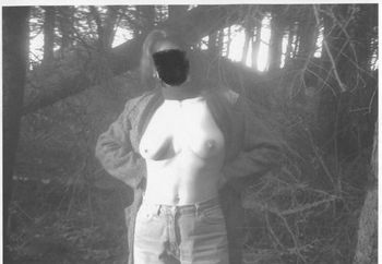 Nip: In The Woods.