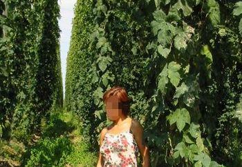 Nip: Lady In Hop Garden