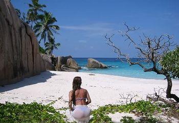 (nip) seychelles dreams 2