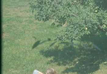Wifey Sunbathing 3