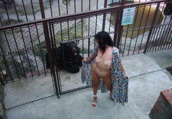 Belgade Zoo