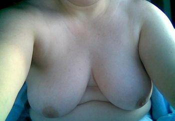 My Friend- Great Tits!