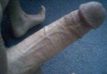 hubbts cock