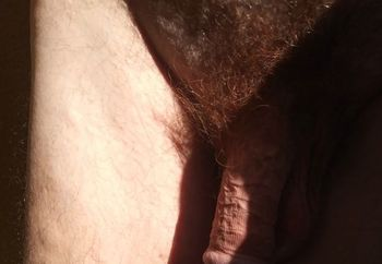 Dyed Pubes