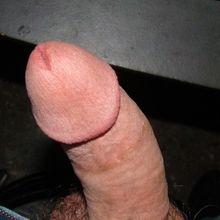 sergom61